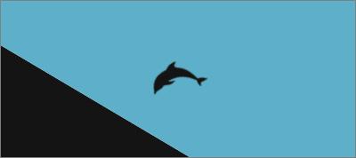 Circle, Square, Triangle, Dolphin