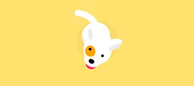 Meshi the CSS Dog