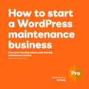 Free eBook: How to start a WordPress maintenance business